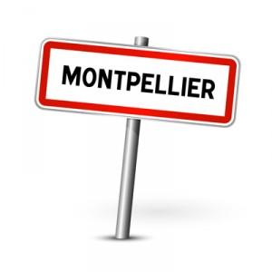 residence-etudiante-leclemenceau-montpellier/montpellier_panneau